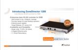Ruckus Wireless ZoneDirector 1200 possibility's